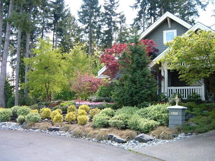 Residential landscaping pro west landscape landscape for Small to medium trees for garden